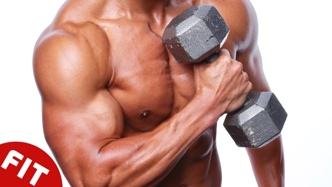 10 Best Muscle Building Exercises Sam S Health And Fitness